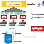 VMware y Oracle